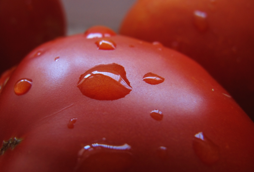 macro of garden fresh tomatoes